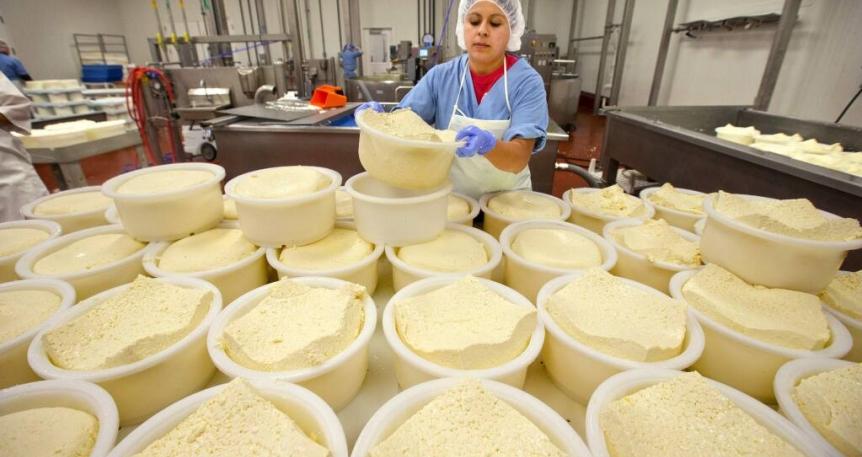 علت شل شدن پنیر وی لس خامه ای و پروسس چیست؟